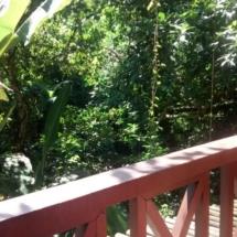 Suite 16 - suite com varanda vista bosque 03