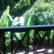 Suite 18- Suite com varanda vista bosque 04