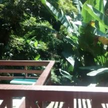 suite 15 - Suite com varanda vista bosque 04